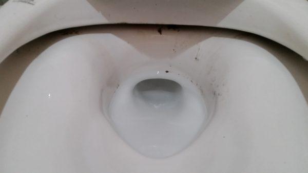 葛飾区トイレクリーニング
