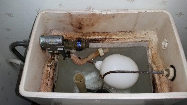 多摩市トイレクリーニング