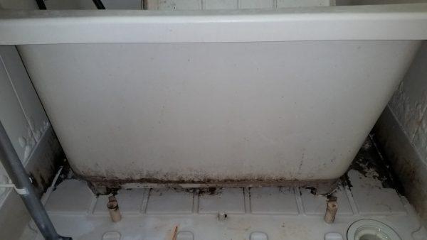 練馬区浴室クリーニング