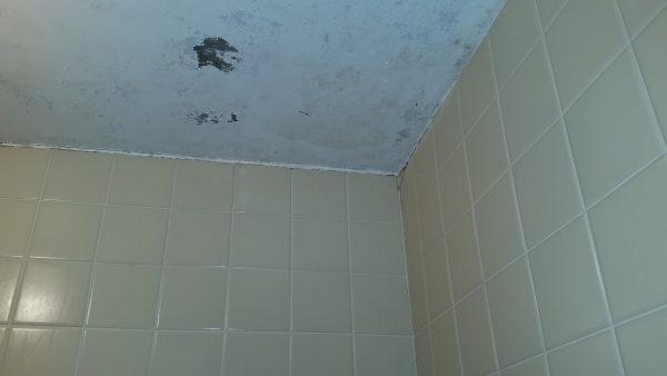 国分寺市浴室クリーニング
