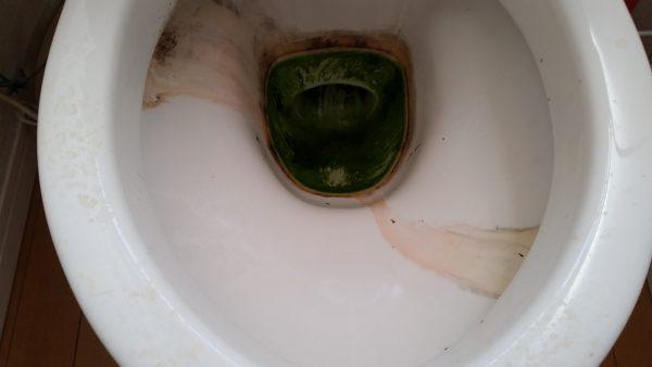 荒川区 トイレクリーニング
