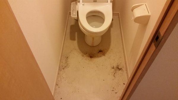 八王子市 ハウスクリーニング トイレ掃除