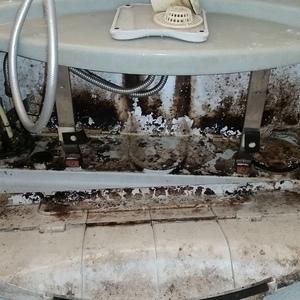 足立区 ハウスクリーニング 浴槽エプロン内部の掃除